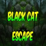 Black Cat Escape