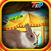 Rescue Rabbit From Circus