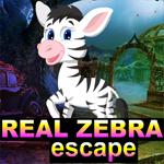 G4K Real Zebra Escape Game
