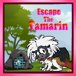 GZ15-Escape The Tamarin