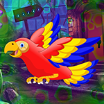 G4K Colorful Parrot Escape