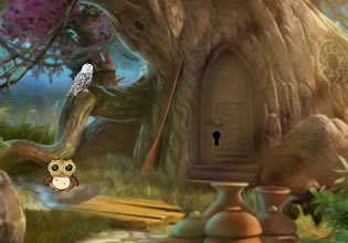 Hidden Owl Forest Fun Escape