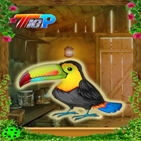 Rescue The Toucan